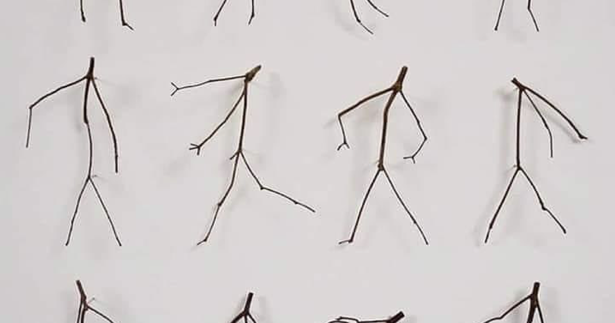 This collection of twigs that look like they're dancing went viral because they really do - the poke