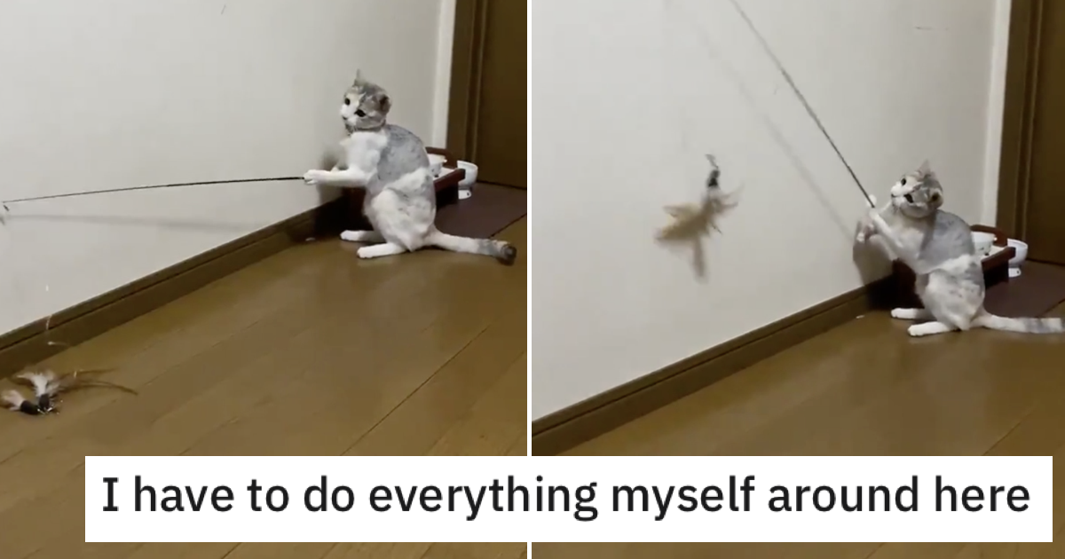 This cat going the extra mile to amuse itself is absolutely pawesome