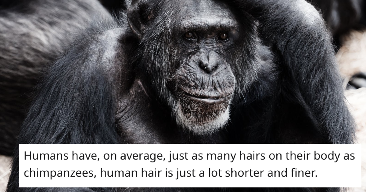 'What's a fact about the human body that not many people know about?' – 30 jaw-droppers