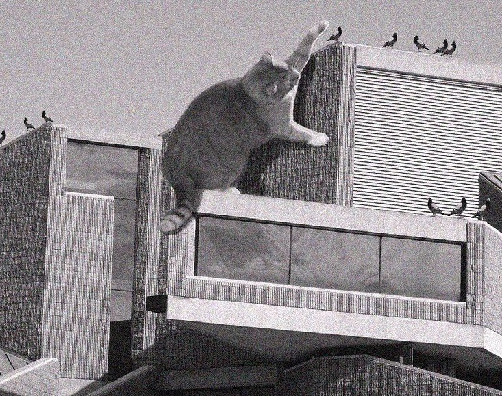 Cats go really well with Brutalist architecture – 17 purrfect examples