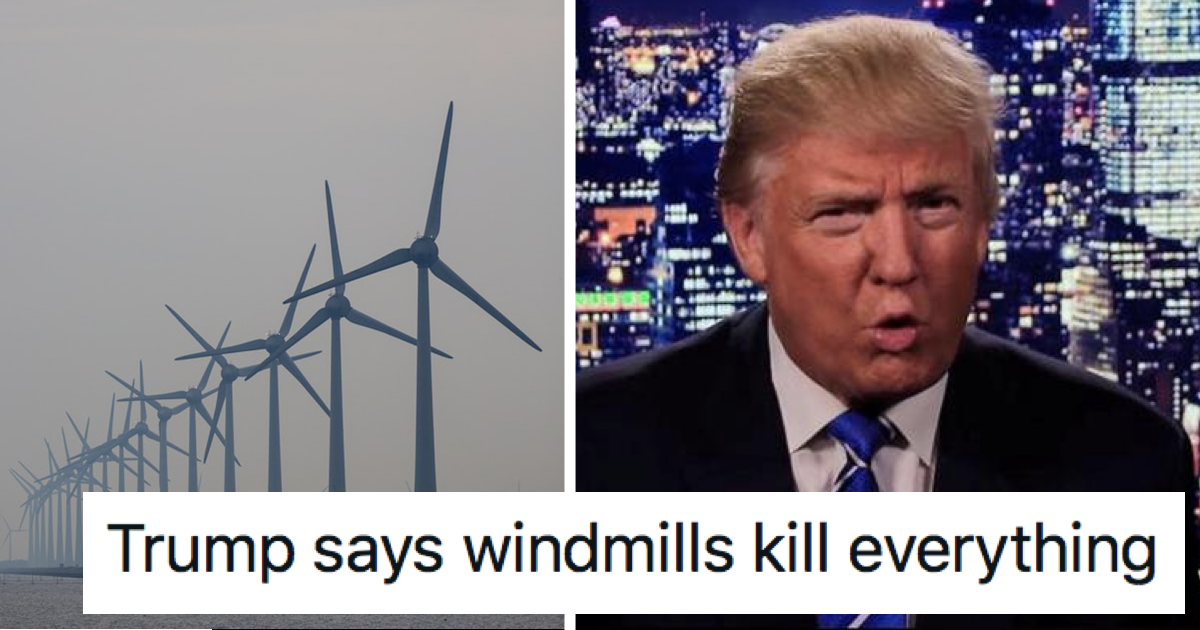 Donald Trump is tilting at windmills that 'kill everything' – 13 wind-powered takedowns