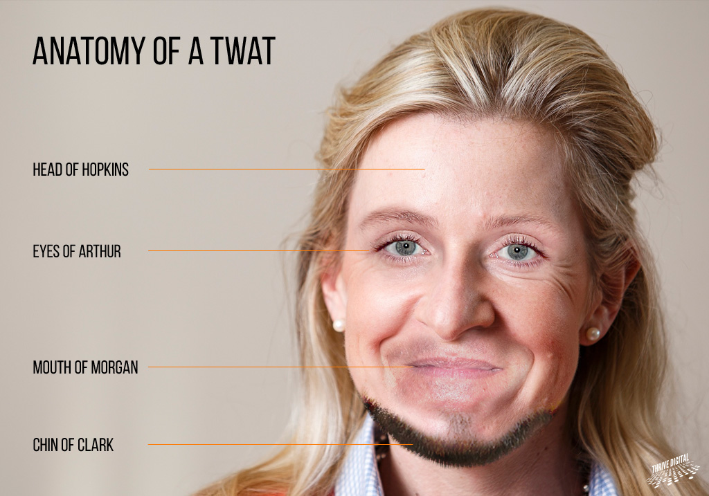 Anatomy Of A Twat The Poke